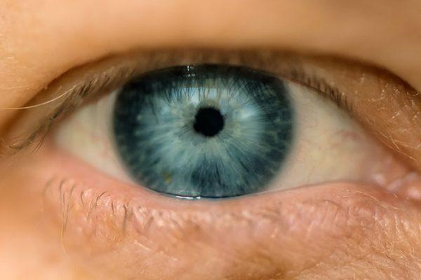 É importante os idosos irem regularmente ao oftalmologista